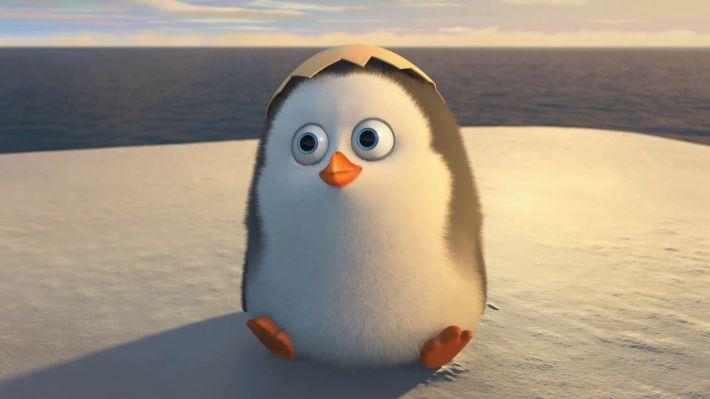 Hình nền cute về chim cánh cụt