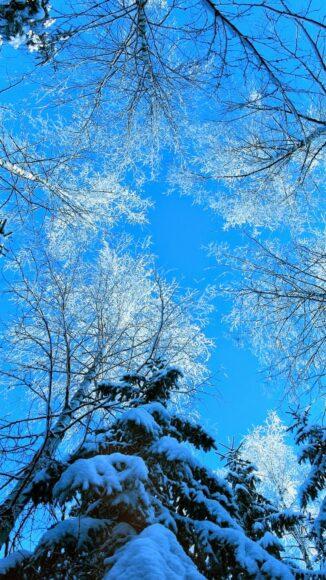 Hình ảnh nền điện thoại mùa đông lạnh nhìn từ chân núi