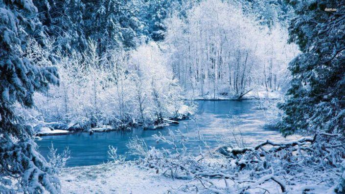 Hình ảnh mùa đông lạnh nơi con suối chảy qua rừng