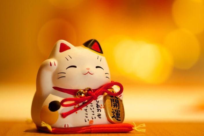 Hình nền mèo thần tài may mắn