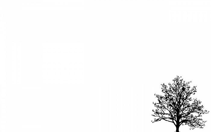 Hình nền background màu trắng đẹp