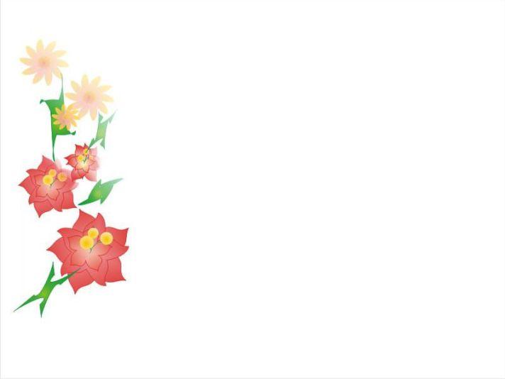 Mẫu hình nền màu trắng trang trí hoa
