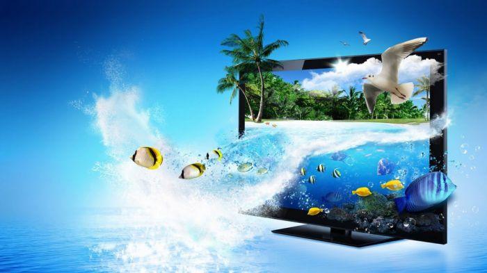 Ý tưởng hình nền về cá cho máy tính