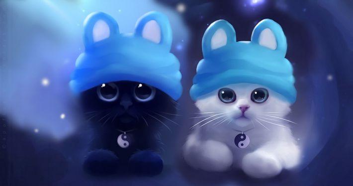 Hình nền 2 chú mèo con siêu cute cho máy tính