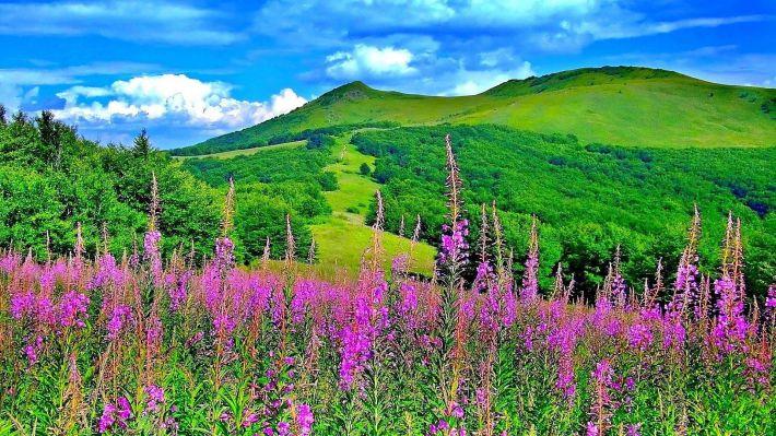 Hình nền phong cảnh thiên nhiên đẹp cho máy tính