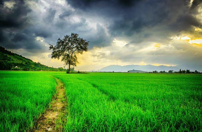 Hình ảnh đẹp về thiên nhiên